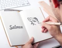 salmon_logo_drawing